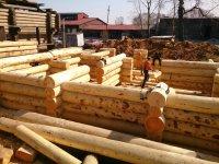 Сруб деревянного дома из кедра на производстве (рубка угла в седло - канадский замок)