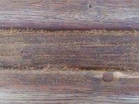 Разрушение древесины из-за моря