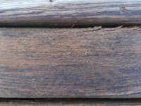 Вид древесины на море