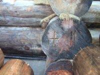 Торец бревна сруба намокшего под осенними дождями